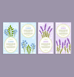 Olibanum and lavender cover vector