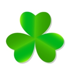 Three Leaf Green Clover vector