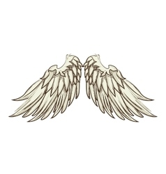 wing angel animal icon vector image