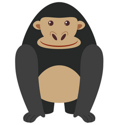 black gorilla on white background vector image