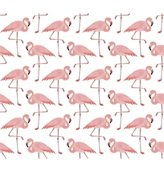 Seamless pattern of pink flamingo vector image
