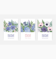 bundle card or flyer templates for herbal vector image