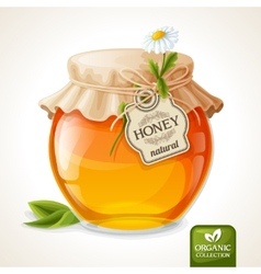 Honey jar glass vector image