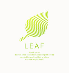 leaf in a linear style vector image