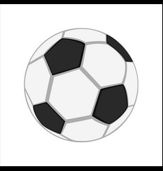 realistic soccer ball vector image