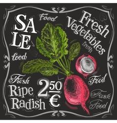 ripe radish logo design template fresh vector image