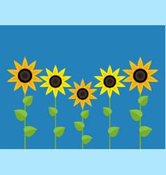sunflower symbols vector image