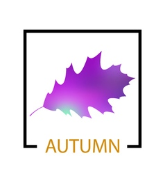 Text autumn on leaf background vector image vector image