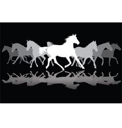 White Trotting horses silhouette on black vector image vector image