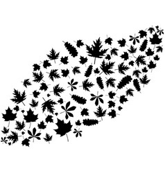 flying autumn leaves black on white background vector image