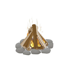 start of firewood surrounded by stones burning vector image vector image