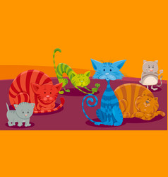 cats or kittens cartoon animal characters group vector image