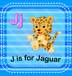 Flashcard letter j is for jaguar vector