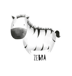 Hand drawing zebra with watercolor vector