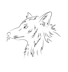Hand drawn pencil of wolf vector