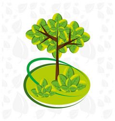 Natural tree with leaves design vector