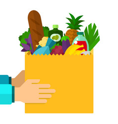 package food in human hands flat isolated vector image