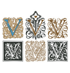 Vintage initial letter v with baroque decorations vector