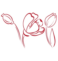 contour of flowers vector image vector image