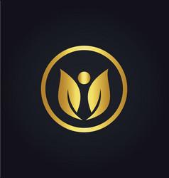 leaf beauty gold logo vector image