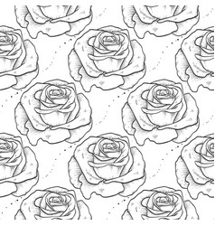 rose seamless pattern of flowers vector image