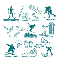 biathlon sled skis and other winter sports vector image vector image
