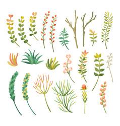 Cartoon different types of plants set vector