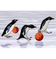 cartoon penguins jump from basketballs vector image