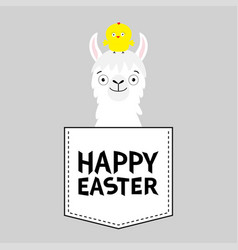 happy easter llama alpaca face head in pocket vector image