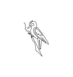 One continuous line drawing cute woodpecker on vector