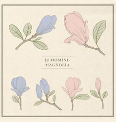 set floral elements bundle linear sketch of vector image