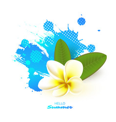 summer seasonal background vector image