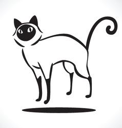 cat 4 vector image