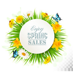 nature spring background with narcissus daisies vector image vector image