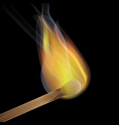 burning match vector image vector image
