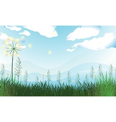 Tall grasses under the blue sky vector image vector image