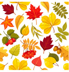 autumn leaves seamless pattern isolated on vector image