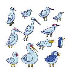 cartoon birds color set vector image