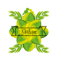 Emblem of love nature with branches and leaves vector