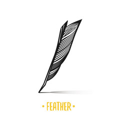 feather black and white objects vector image