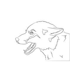 portrait of a fox lines vector image