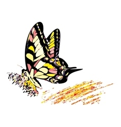 Colorful hippy butterfly vector