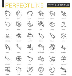 fruits and vegetables thin line web icons set vector image