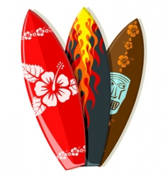 surf boards vector image vector image