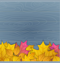 autumn leaves on wooden vector image