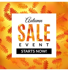 Autumn sale background with oak leaves vector image