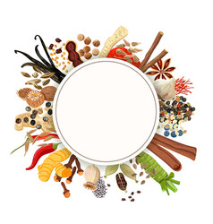 culinary spices big set vector image
