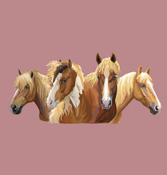set of horses breeds 6 vector image