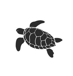 turtle design on white background vector image