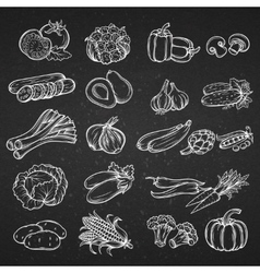 set of different hand drawn decorative vector image vector image